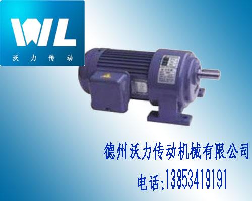 GL(H)小齿轮减速电机