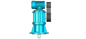CWS type circular cylindrical worm reducer