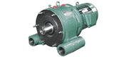BW - T special cycloidal reducer