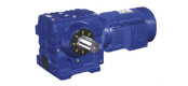 DS series helical gear worm reducer