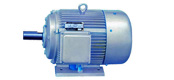 JY-H series three-phase asynchronous motor with ship