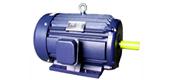 NEMA-HE series standard asynchronous motor (143 ~ 505T frame)