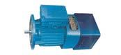 SEJ series three phase asynchronous motor (H71 ~ 160mm)