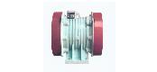 VA, VB series vibrating three-phase asynchronous motor