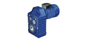 WF series parallel shaft helical gear reducer motor