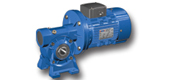 ANRV series worm gear motor