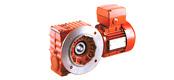 WXS系列斜齿轮-蜗轮蜗杆减速电机