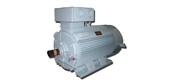 Y-W, Y-F, Y-WF series of outdoor type, anti-corrosion type, outdoor anticorrosion type three-phase asynchronous motor