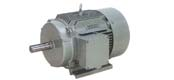 Y2 series three-phase asynchronous motor (H63 ~ 355mm)
