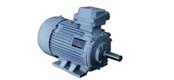YA series increased safety type, medium sized high voltage three phase asynchronous motor (6kV or 10kV)