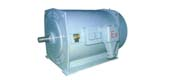 YB series medium high voltage flameproof three-phase asynchronous motor (6kV)