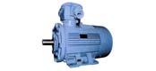 YB series medium low voltage flameproof three-phase asynchronous motor