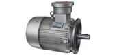 Flameproof three-phase asynchronous motor for YBGB series pipeline pump
