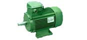 YCP series (IP54) three-phase asynchronous motor (exports)