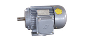 The YD series of double speed three-phase induction motor (6KV)