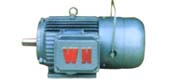 YEJ series three phase asynchronous motor (H80 ~ 225mm)
