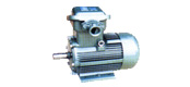 YFB series for dust explosion-proof three-phase asynchronous motor