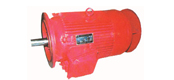 YGF series of high temperature of three-phase asynchronous motor