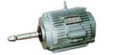 YLZ series three-phase asynchronous motor for cooling tower