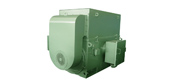 YTM, YHP, YMPS series power three-phase asynchronous motor for coal grinding machine (6kV)
