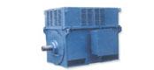 Y系列中型高压三相异步电动机(H355~630mm)