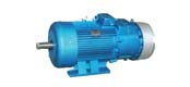 YZJ, YZRJ, YZRW series of crane and metallurgical three-phase asynchronous motor